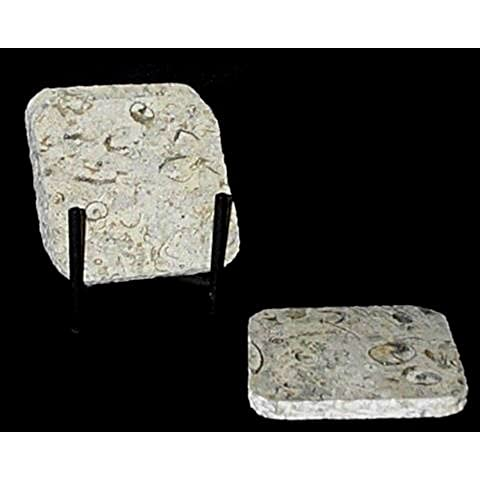 Coral Stone Coasters Set with Holder - Traditional 35th Coral Anniversary Gift by Khan Imports