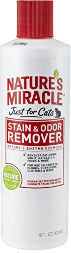 natures-miracle-just-for-cats-stain-odor-remover-16-ounce-pour-bottle-hg-5155