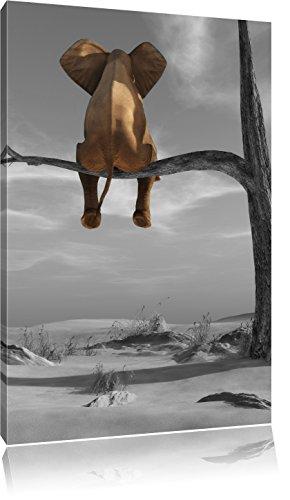 sitzender Elefant auf einem Ast in der Wüste B&W Detail, Format: 120x80 auf Leinwand, XXL riesige Bilder fertig gerahmt mit Keilrahmen, Kunstdruck auf Wandbild mit Rahmen, günstiger als Gemälde oder Ölbild, kein Poster oder Plakat