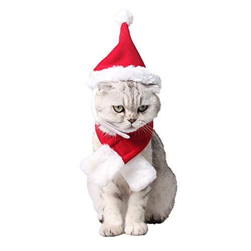 PEDOMUS Katzen Weihnachtsmütze und Schal Set Weihnachtskostüm Hut für Kleinen Hunde (rot-weiß)