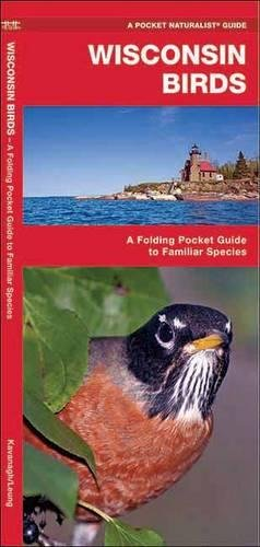 Wisconsin Birds: A Folding Pocket Guide to Familiar Species (Pocket Naturalist Guide Series)