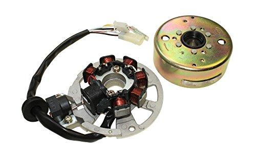 Roller Lichtmaschine für Minarelli Motoren komplett für Aprilia Amico Area 51 Gulliver,Yamaha Aerox Axis Breeze,MBK Evolis Fizz Forte