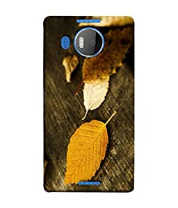 PrintVisa Designer Back Case Cover for Microsoft Lumia 950 XL :: Microsoft Lumia 950 XL Dual SIM (Wood Furniture Dry Leaf Autumnwinter Wallpaper)