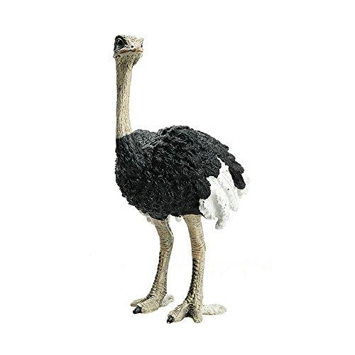 Schleich 14744 - Wild Life Ostrich