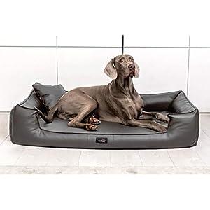 TIERLANDO® G5-L-02 Orthopädisches Hundebett Goofy VISCO Anti-Haar Kunstleder Hundesofa Hundekorb Gr. XL 130cm Graphit Grau Ortho