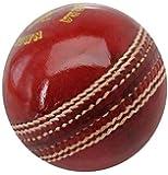 GTS® Dezir Cricket Leather Ball