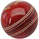 GTS Dezir Cricket Leather Ball