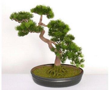 künstlicher Japanischer Pinien Bonsai, mit ca.318 Blättern, Höhe ca. 40cm – künstlicher Bonsai