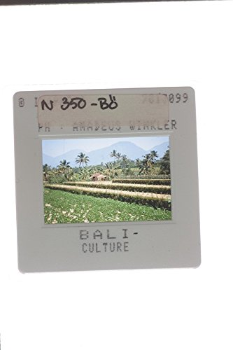 slides-photo-of-balinese-culture