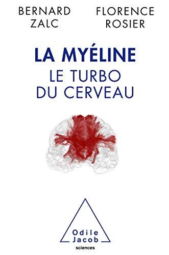 La Myéline: Le turbo du cerveau
