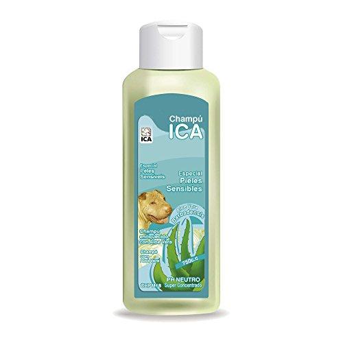 ICA CHPM18 Champú para Piel Sensible con Aloe Vera para Perros