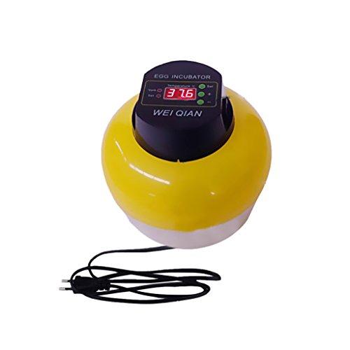 MagiDeal Für 8 Eier Automatische Inkubator Brutkasten Brutmaschine Brutapparat Brüter Motorbrüter 220v 60hz