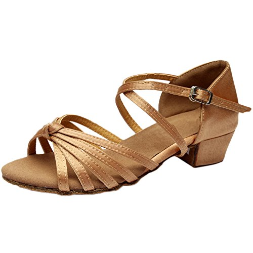 Oasap Women's Peep Toe Cross Strap Chunky Heels Latin Dance Sandals Light Nude