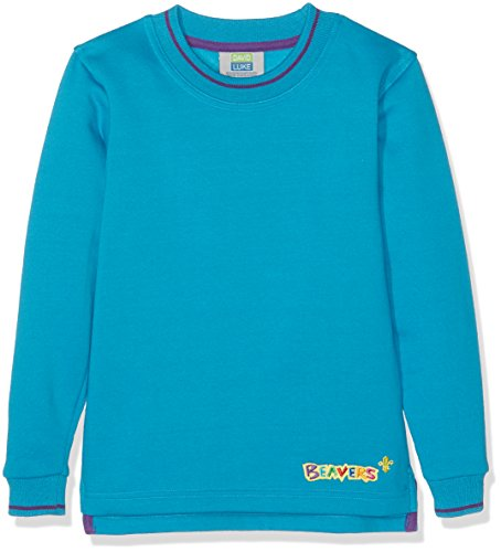 Beaver Tipped Boy's Sweatshirt Turquoise C26IN