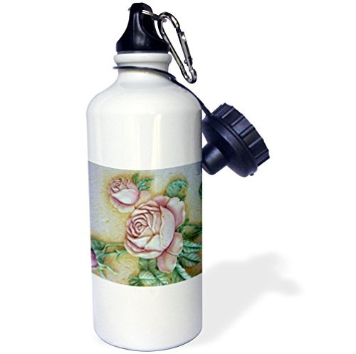 Statuear ceramica Roses aluminum 567gram 600ml borraccia (Nel Corso Di Ceramica)