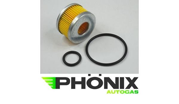 Phönix Autogas Filter Certools F 701 Reparatur Set Flüssigphase Gasfilter Für Lpg Kme Stag Etc Auto