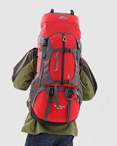 BM Forniture professionali outdoor trekking campeggio zaino spalla Zaini 65L grande capacità borsa pic-nic , red Red