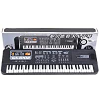 Auplew 61-Key E-Keyboard, Easy-to-Use Beginner Instrument Instrument Sounds & Accompaniment Styles (Black)
