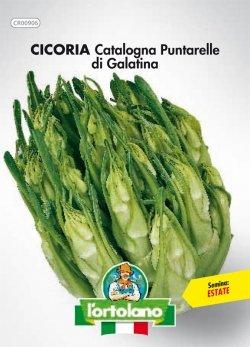 Sementi orticole di qualità l'ortolano in busta termosaldata (160 varietà) (CICORIA CATALOGNA PUNTARELLE DI GALATINA)