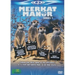 Image of Meerkat Manor: Series 1 [DVD]