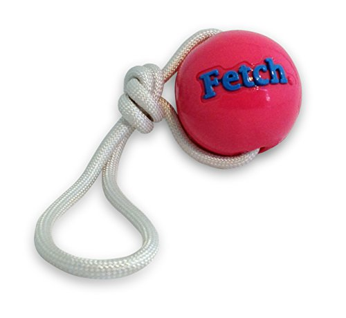Planet Dog Orbee-Tuff Fetch Ball mit Kordel Hundespielzeug - Durchmesser ca. 8,2 cm - pink -