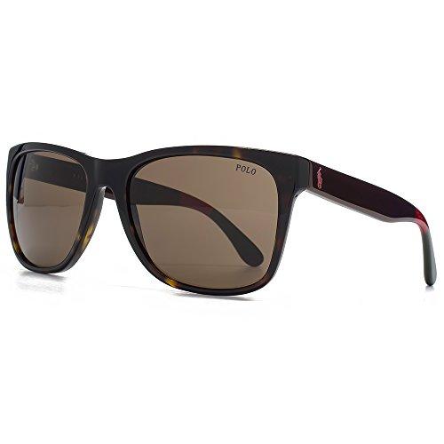 Polo Ralph Lauren Wayfarer lunettes de soleil Style en Havane foncée  brillant PH4106 556873 57 57 e9a27844b4bd