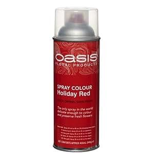 Smithers Oasis - Aérosol Peinture Floral Spray 400 ml pour Fleurs Fraîches Feuillage Matériau Séché Récipient