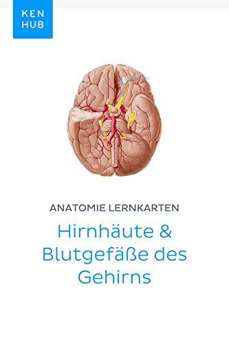 Anatomie Lernkarten: Hirnhäute & Blutgefäße des Gehirns: Lerne alle Arterien, Venen, Organe, Gewebe, Knochen und Nerven unterwegs (Kenhub Lernkarten 42) Knochen-gewebe