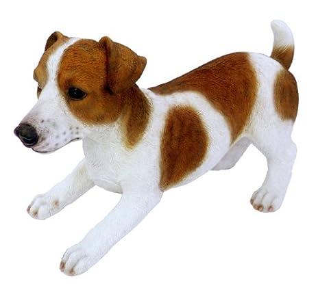 Real Life Medium Jack Russell Dog Garden Ornament (SizeD) - Bone Disegno