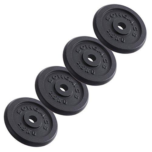 #Songmics Hantelscheiben Gewichte Set aus Gusseisen 31 mm Bohrung 4 x 2,5 kg SYL01T#