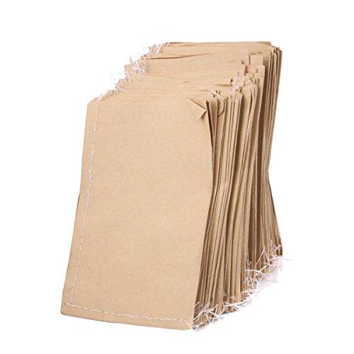 Preisvergleich Produktbild VORCOOL 100Stück Kraftpapier Papiertüten Partytüten Geschenkbeutel Saatgutlagerung Taschen