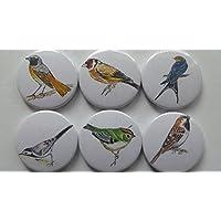 Kühlschrankmagnete Vögel
