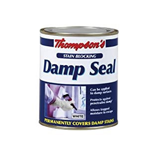 TDS250 250ml Thompsons Damp Seal
