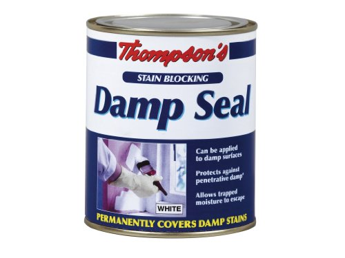 tds250-250ml-thompsons-damp-seal
