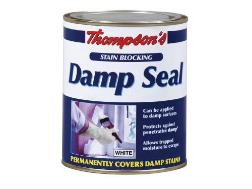 thompson-tds250-damp-seal-holzversiegelung-ml-thompsons-feuchten-dichtung