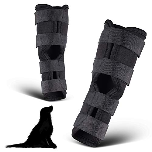 PamperPets Bandage für Hunde, für Vorder- und Hinterbeine, 2 Stück, Größe S