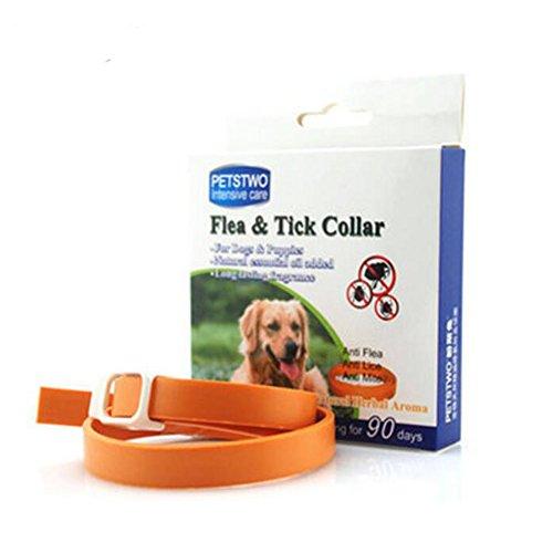 Zeckenhalsband für kleine, NNIUK Zecken Flohband Wasserdichter Gummi Flohkragen Natürlicher ätherischer Ölgeruch zum Schutz Ihrer lieben Hunde und Katzen.