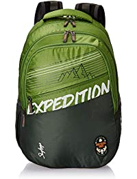 Skybags Bingo Extra 01 32 Ltrs Green Casual Backpack (Bingo Extra 01)