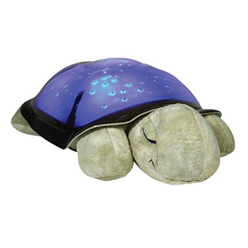 Proyectores de luz nocturna de Tortuga