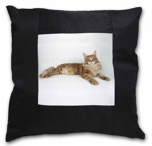 Advanta rot Maine Coon Katze schwarz Bordüre Satin Feel Kissenhülle mit Kissen einfügen, Polyester, mehrfarbig, 36x 36x 12cm