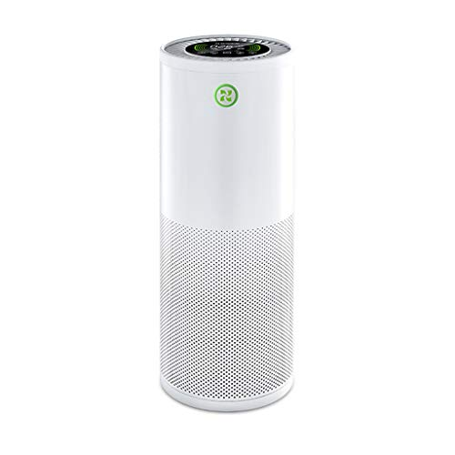 41XhKqZl5AL. SS500  - Air Purifiers Household Smoke Removal and Dust Removal Bedroom To Taste Negative Ion Indoor, Real Hepa Filter, Activated Carbon, Negative Ion Generator