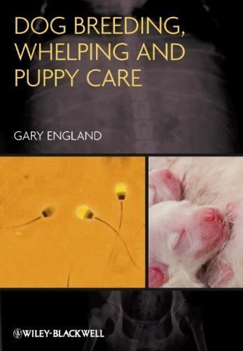 Dog Breeding, Whelping and Puppy Care 1st (first) Edition by England, Gary published by Wiley-Blackwell (2012)
