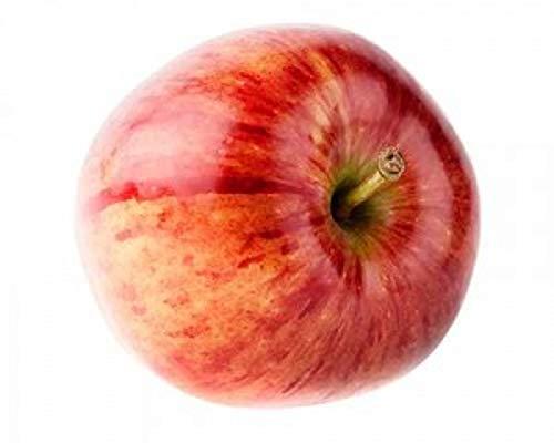 Apfel Für den Frischverzehr geeignet