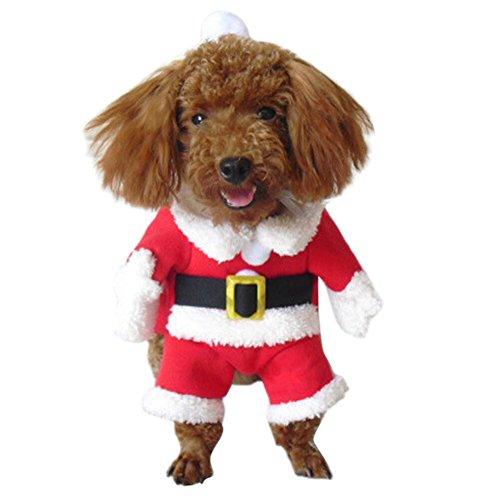 Eleery Haustier Weihnachtskostüm set mit hut Weihnachten Flügel Hundemantel Bekleidung für Hund Katze Anzug set (S, Rot (Katze Kostüm In Einfach Hut Den)