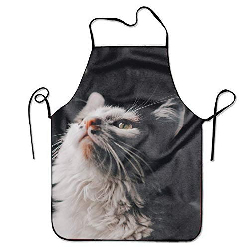 Cat Easy Kostüm Mädchen - HTETRERW Lovely Cat Pinafore Waterproof Cooking Apron Durable Easy Cleaning Creative Bib for Man and Woman Standar Size