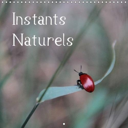 Instants Naturels (Calendrier mural 2018 300 × 300 mm Square): Instants Naturels : Laissez-vous envoûter par le monde magique de notre nature. ... / Visuelle Akzente Fotografie, Stefanie (4 Akzent)