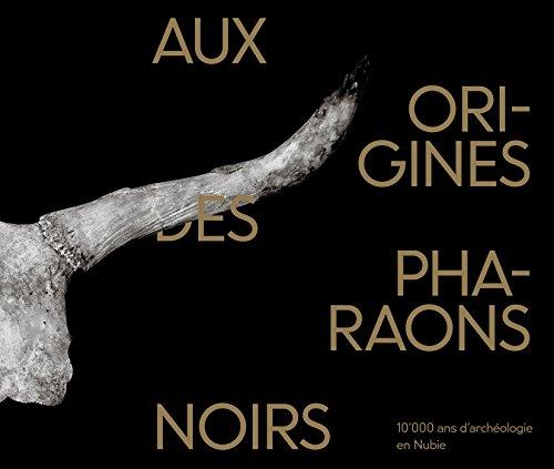 Aux Origines des Pharaons Noirs : 10'000 Ans d'Archéologie en Nubie