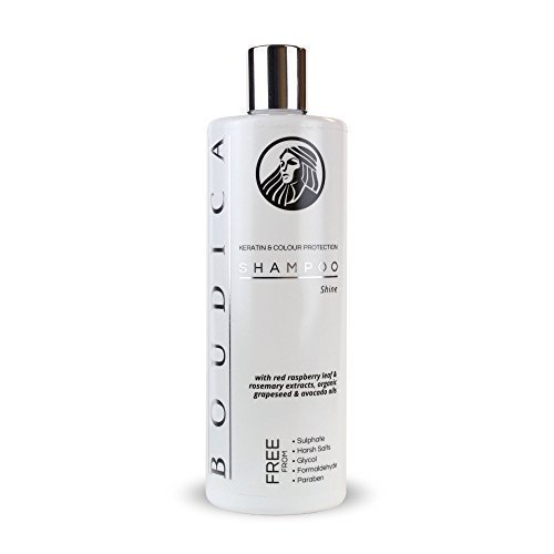 Boudica Glanz sulfatfreies Shampoo - 500 ml (Shampoo Salz Freie)