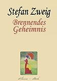 Stefan Zweig: Brennendes Geheimnis (Kommentiert)