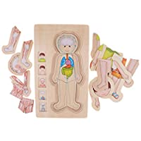 SM SunniMix Educational Puzzles, Wooden Multi-Layer Puzzle Human Body Structure Puzzle Kids Preschool Educational Wooden Toys